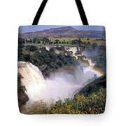 Blue Nile Falls Tote Bag