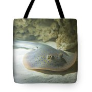 Blue Spotted Fantail Ray  Tote Bag
