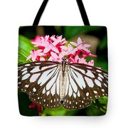 Blue Tiger Butterfly Tote Bag