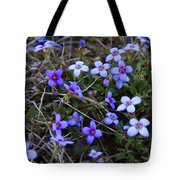 Bluets Tote Bag by Kathryn Meyer