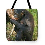 Bonobo Tote Bag