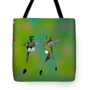 Booted Racket-tail Hummingbird Males Tote Bag