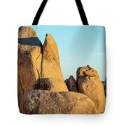 Boulders In A Desert, Joshua Tree Tote Bag