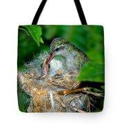 Broad-billed Hummingbird And Young Tote Bag