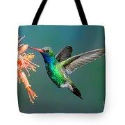 Broad-billed Hummingbird At Ocotillo Tote Bag
