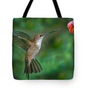 Bronzy Inca Hummingbird Tote Bag