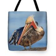 Brown Pelican Preening Tote Bag
