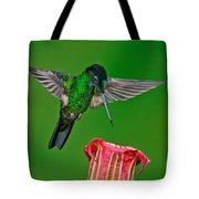 Buff-winged Starfrontlet Tote Bag