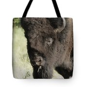 Buffalo Painterly Tote Bag