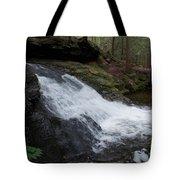 Buffam Falls Lower Cascade Tote Bag