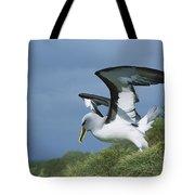 Bullers Albatross With Colorful Bill Tote Bag