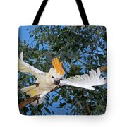 Cacatoes A Huppe Orange Cacatua Tote Bag