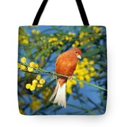 Canari De Couleur Rouge Tote Bag