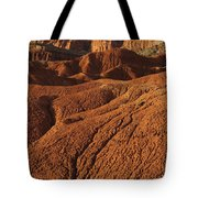 Capital Reef National Park Tote Bag