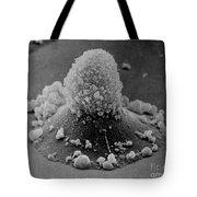 Carcinoma Cell Apoptosis Tote Bag