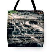 Cascadilla Gorge Tote Bag