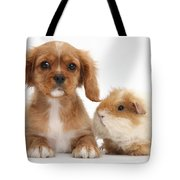 Cavalier King Charles Spaniel Pup Tote Bag