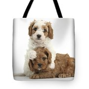Cavapoo Puppies Hugging Tote Bag
