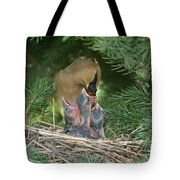 Cedar Waxwings Tote Bag by Linda Freshwaters Arndt