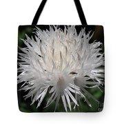 Centaurea Named The Bride Tote Bag