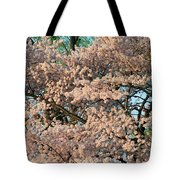 Cherry Blossoms In Pink And Brown Tote Bag
