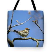 Chipping Sparrow Perched In A Tree Tote Bag