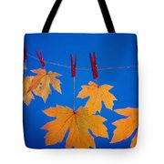 Close-up Of Fall Colored Maple Leaves Tote Bag