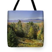 Colorful Fall Forest Near Rangeley Maine Tote Bag