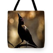 Common Grackle Tote Bag