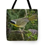 Common Yellowthroat Tote Bag