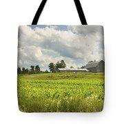 Corn Growing In Maine Farm Field Tote Bag