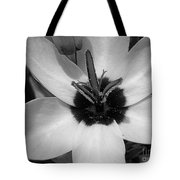 Corn Lily Named Giant Tote Bag