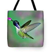 Costas Hummingbird Tote Bag