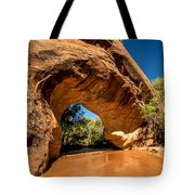 Coyote Natural Bridge - Coyote Gulch - Utah Tote Bag by Gary Whitton