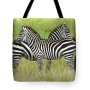 Crisscross Stripes Tote Bag
