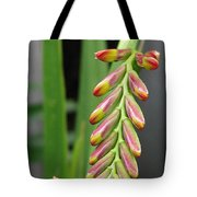 Crocosmia Named Lucifer Tote Bag
