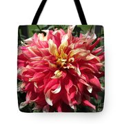 Dahlia Named Bodacious Tote Bag