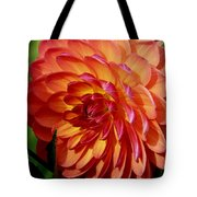 Dahlia Profile Tote Bag