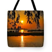 Dancing Light Tote Bag by Frozen in Time Fine Art Photography