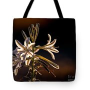 Desert Easter Lily Tote Bag by Robert Bales