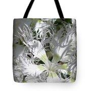 Dianthus Superbus - White Tote Bag