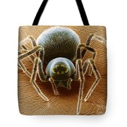 Dictynid Spider Tote Bag by David M. Phillips