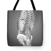 Digestive System And Bones Tote Bag