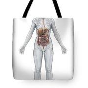 Digestive System Female Tote Bag