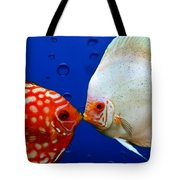 Discus Fish Tote Bag