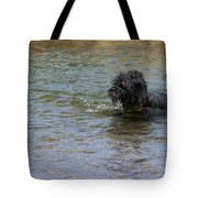 Dog Ball Water Tote Bag