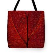 Dogwood Leaf Backlit Tote Bag