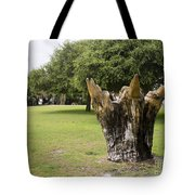 Dolphin Tree In Melbourne Beach Florida Tote Bag by Allan  Hughes