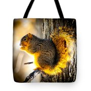 Early Morning Glow Tote Bag
