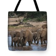 Elephants Crossing The River Tote Bag